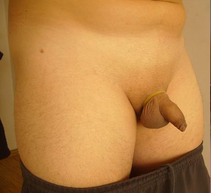 humiliation, tiny penis, femdom